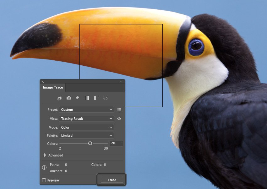 How to Trace Photo In Illustrator Select Trace