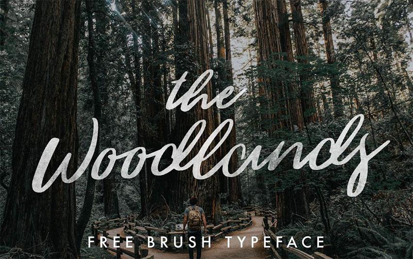 The Woodlands - Silhouette Cursive Fonts