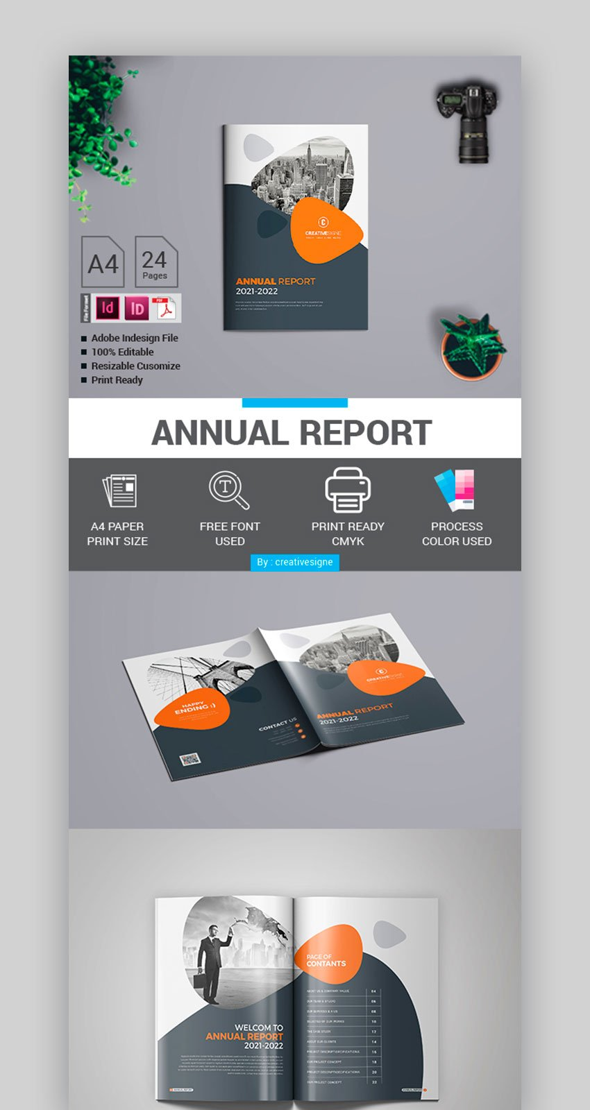 Non Profit Organization Annual Report Format