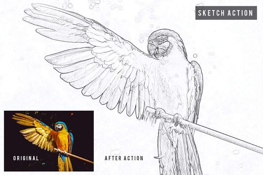 Sketch Action Photoshop-Effekt