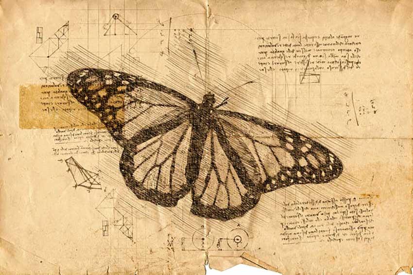 Da Vinci Sketch Photoshop Aktion