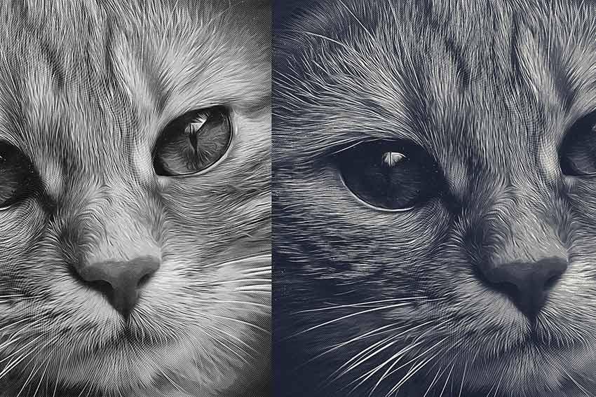 Gravierter Fotoskizzeneffekt