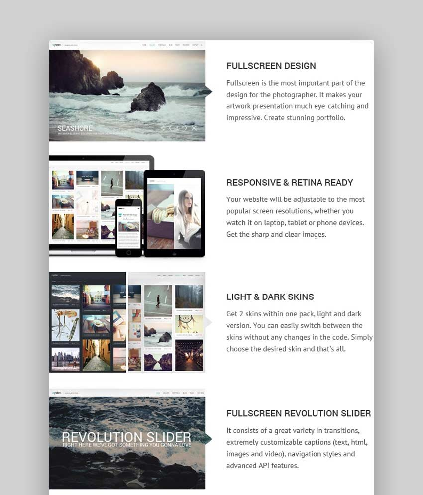 Oyster - Photography Theme