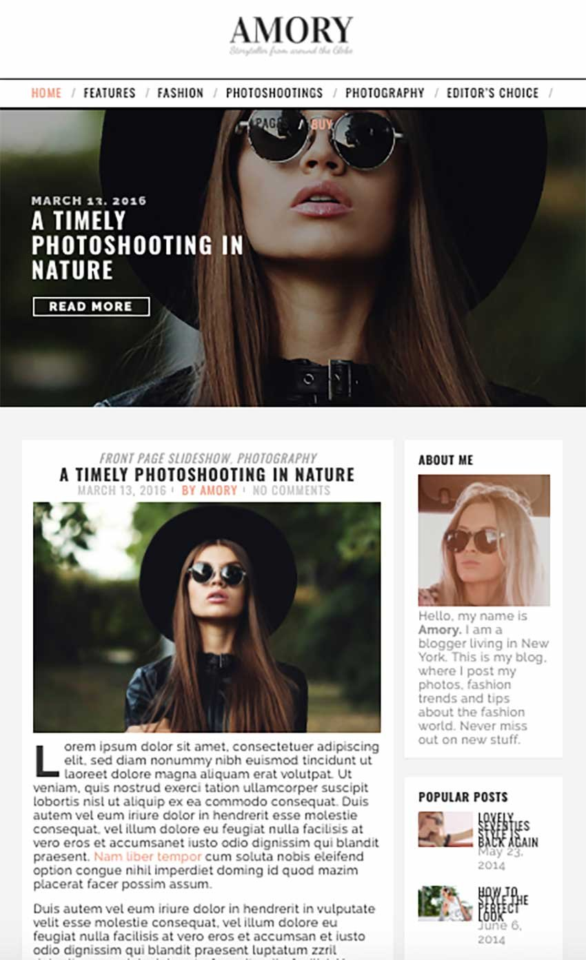 Amory Blog - Responsive WordPress Theme for Personal Blogs