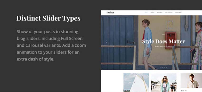 Escher personal WordPress theme slider types