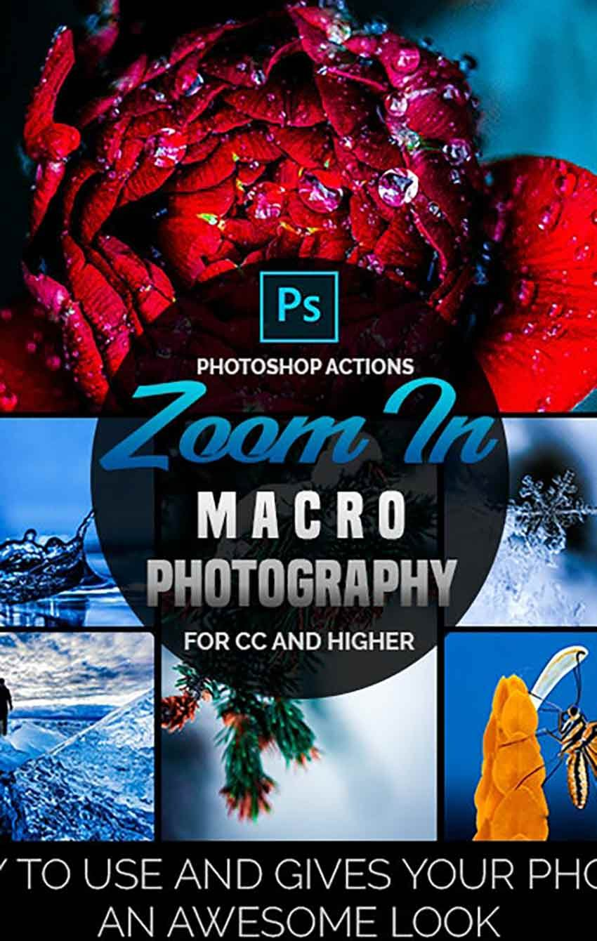Zoom In - Macro Photography Photoshop Actions