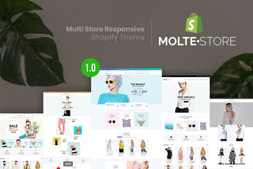 MolteStore Best Shopify Theme