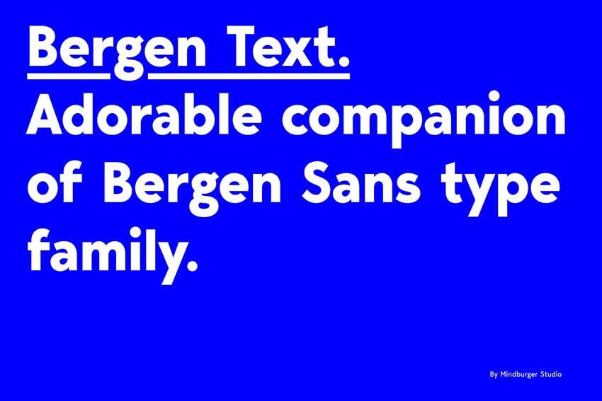 Bergen Text Modern Sans Serif Fonts