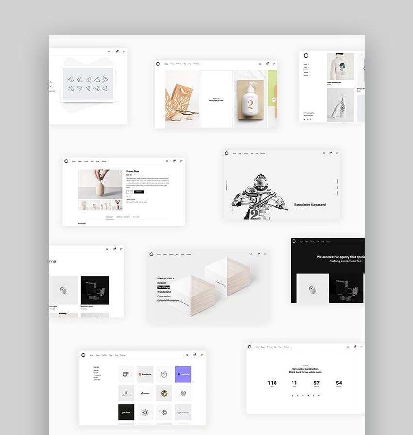 Ozark Modern WordPress Themes