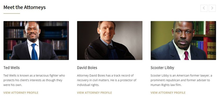 HumanRights Solicitor Theme Attorney Profile