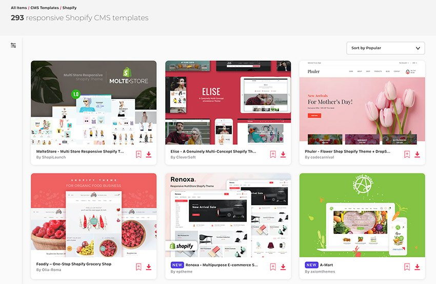 Top Responsive Theme Shopify on Envato Elements for 2021