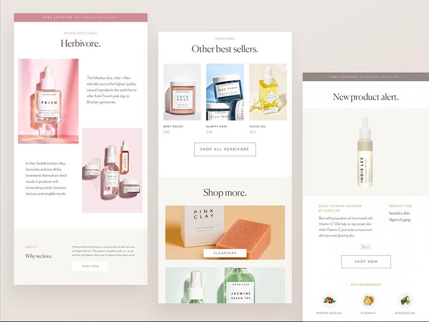 Branding Offer Free HTML Email Template Download