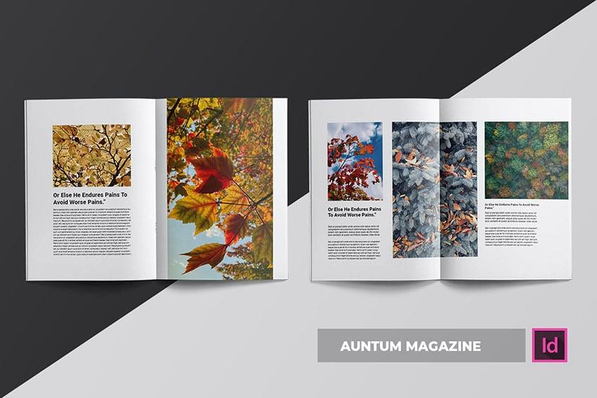 Auntum Magazine Template Spreads