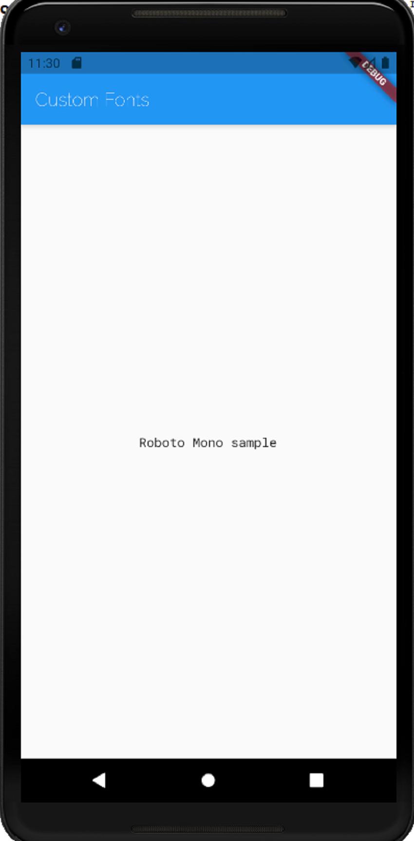 Flutter app with Roboto Mono font
