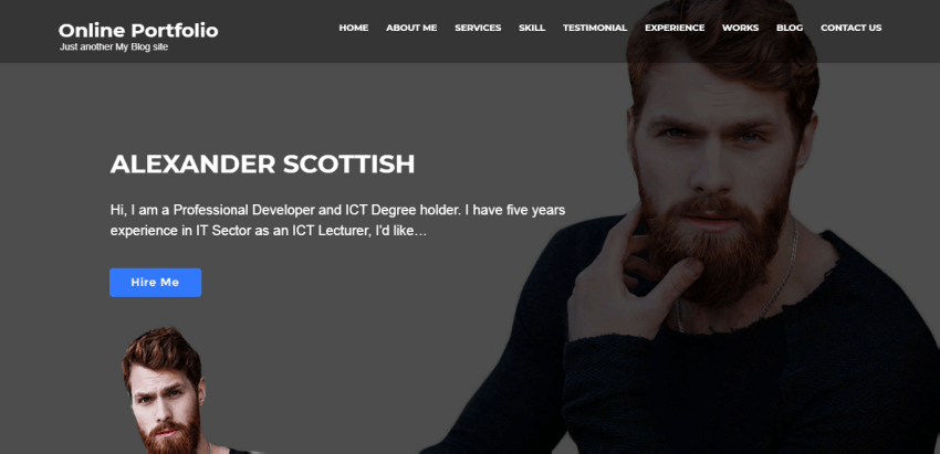 Online Portfolio - a good theme for personal portfolio websites