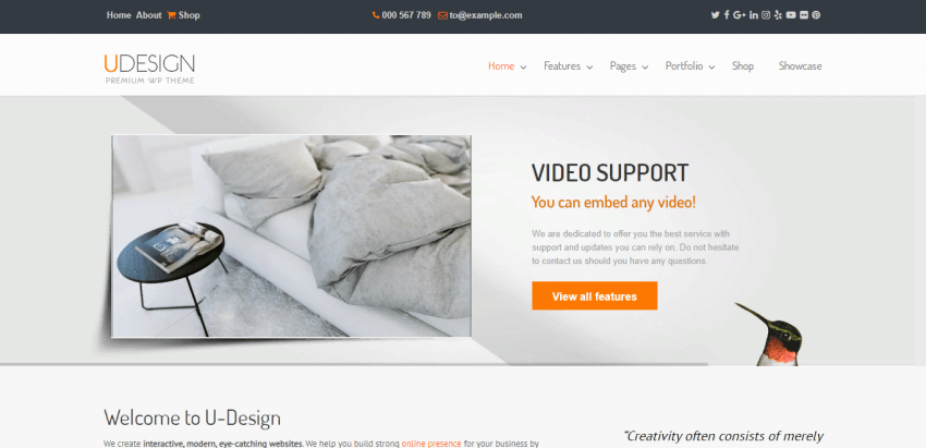 uDesign - well-developed WordPress theme for different use cases