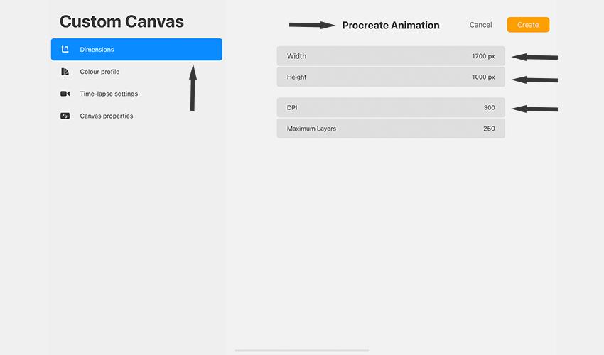 Create a custom canvas in Procreate