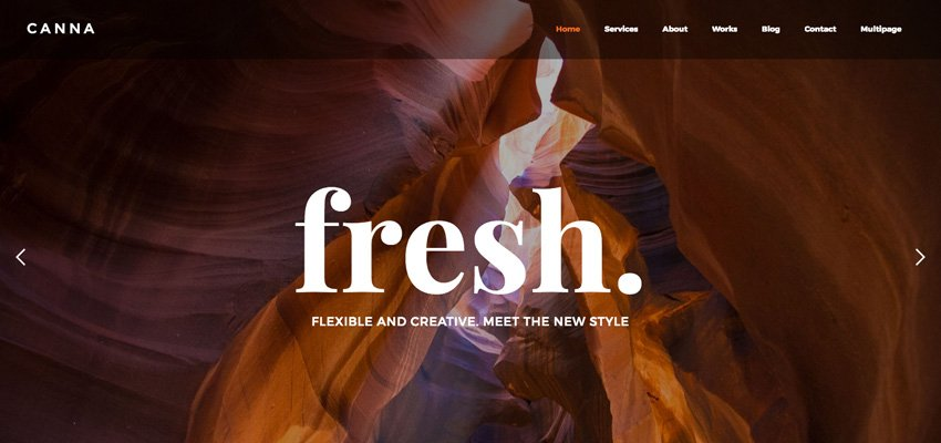 Canna Multiuse Webflow Template With Page Builder