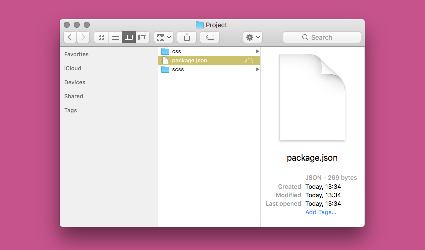 packagejson