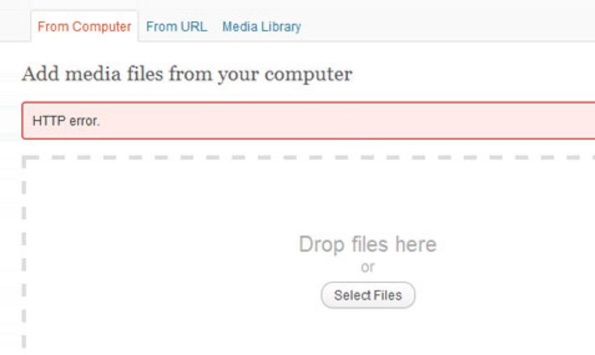 generic HTTP error message in WordPress