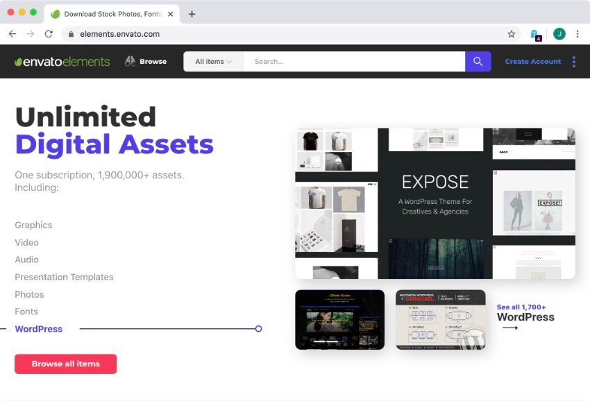 Envato Elements for the best WordPress themes