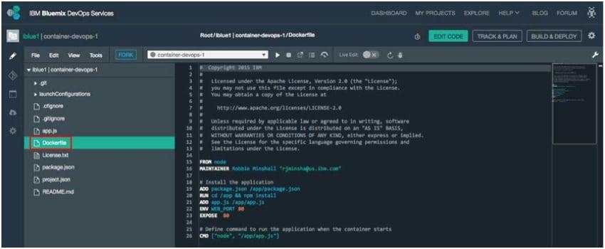 IBM BlueMix and DevOps - Instructions for Docker Container