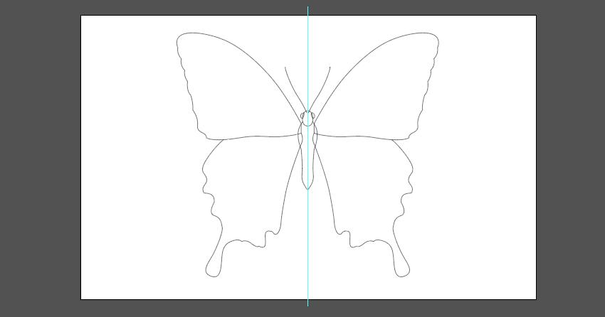 The basic shapes
