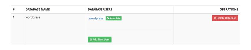 Associate Database User