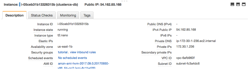 Find the instances Public IP address
