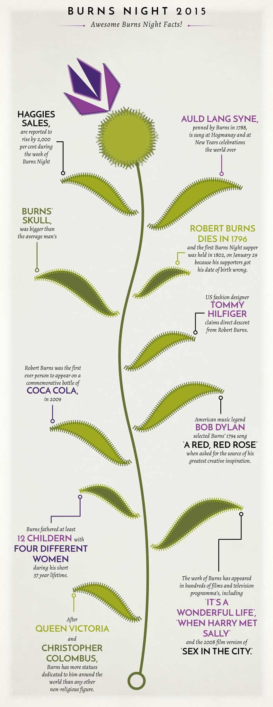 Simple InDesign Infographic by Arjen van der Velde
