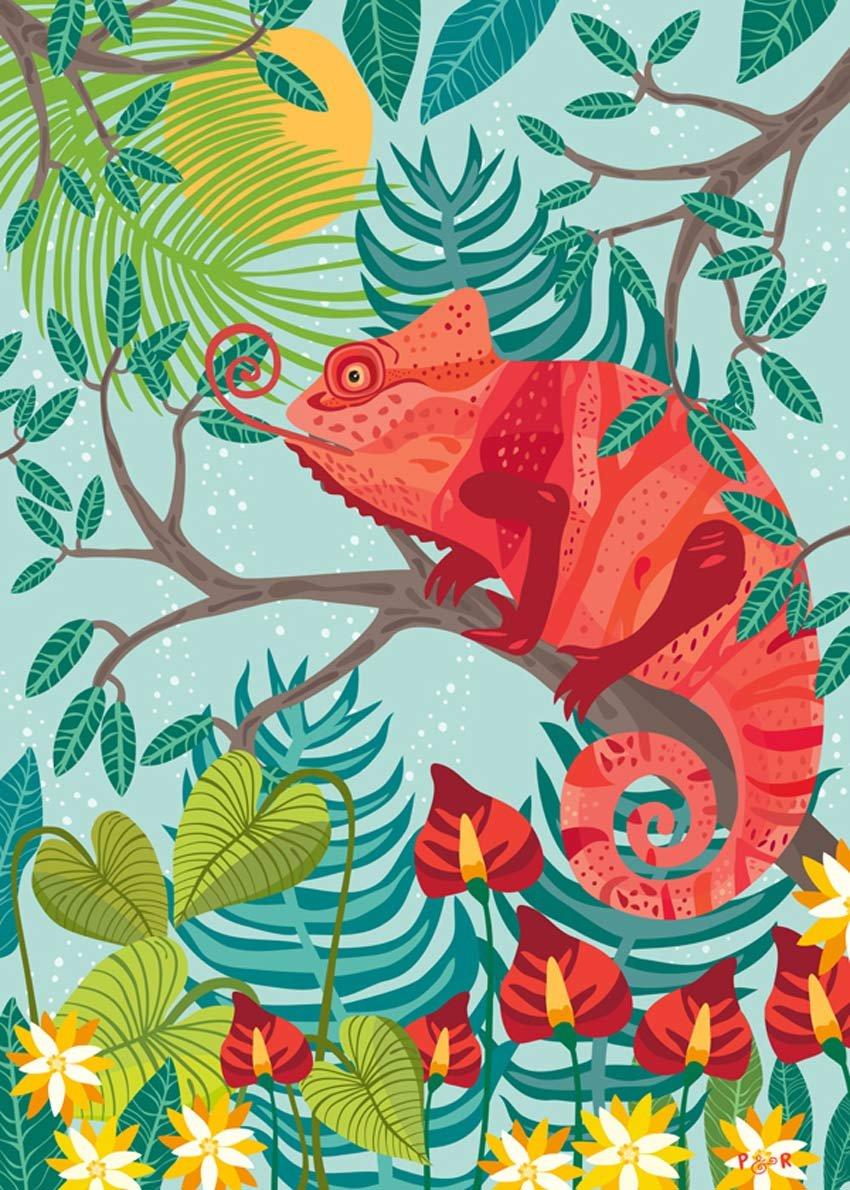 Jungle Collection by Paula McGloin