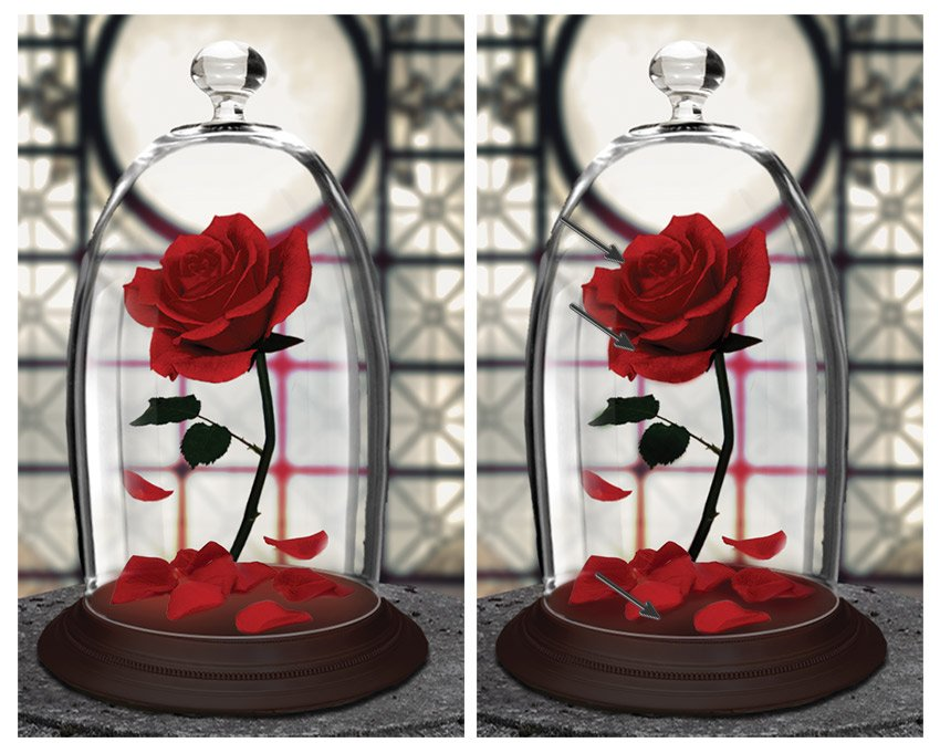 Paint shadow onto the rose