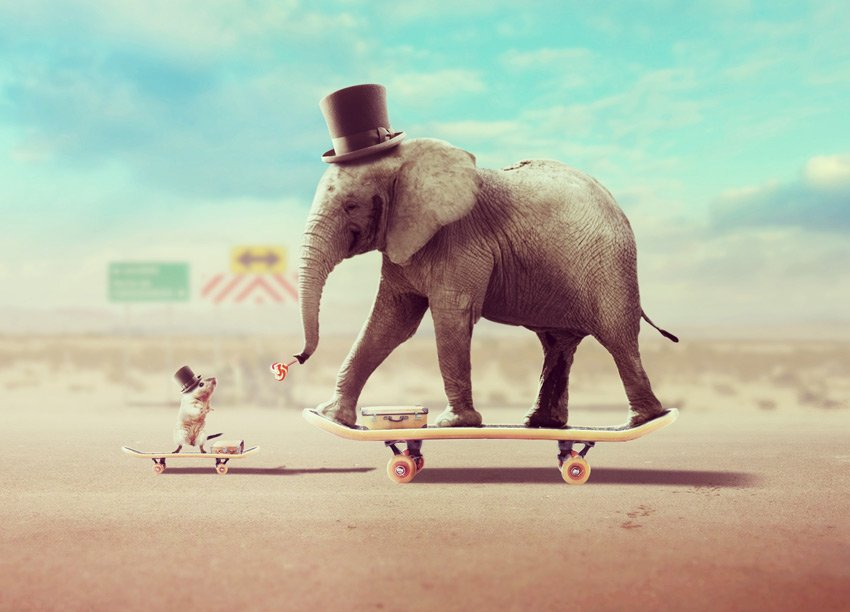 How to Create a Surreal Animal Photo Manipulation With 10 Photos in Adobe Photoshop