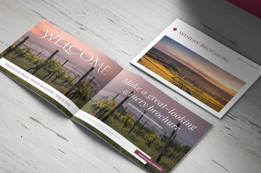 Vineyard Winery Brochure