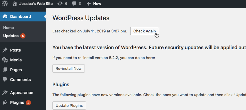 You can install WordPress plugin and theme updates by navigating to Dashboard  Updates