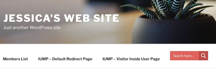Ive added the search bar to my websites menu