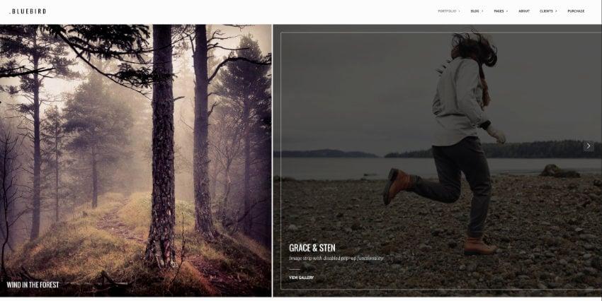 Bluebird WordPress photography theme