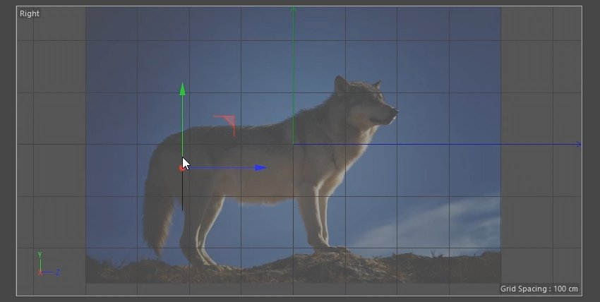 Positioning n-Side to fir the reference image