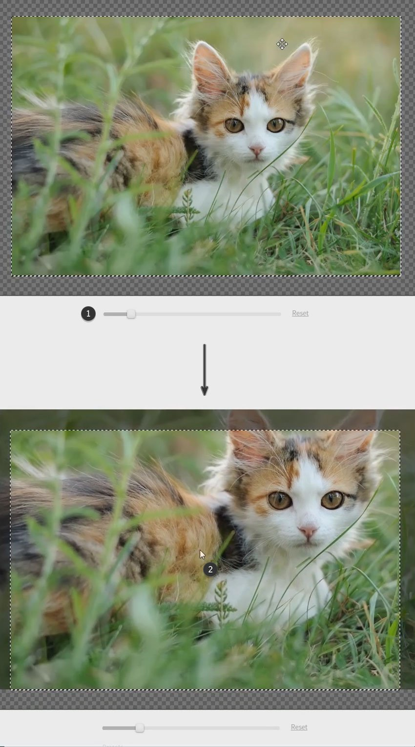 move your photo