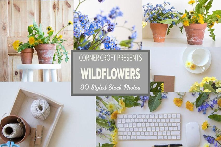 Wildflower Styled Stock Photo Bundle