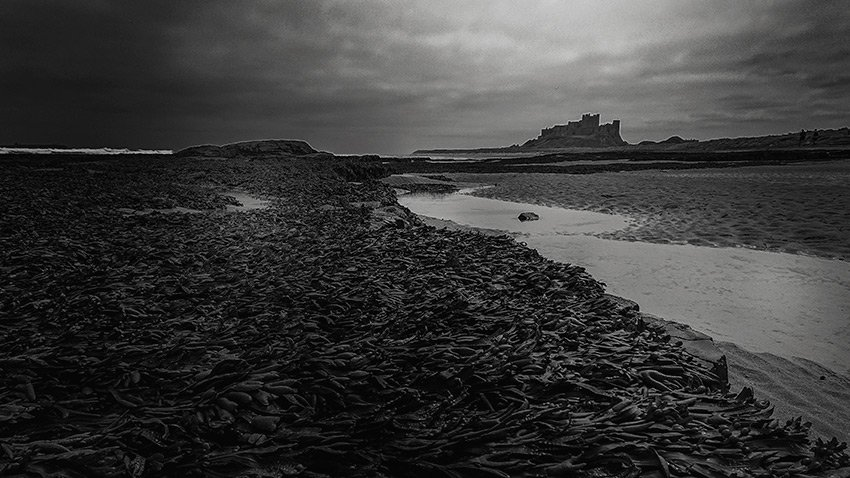 Bamburgh Castle Northumberland - Image Marie Gardiner taken with the Sony Xperia XZ2 Compact