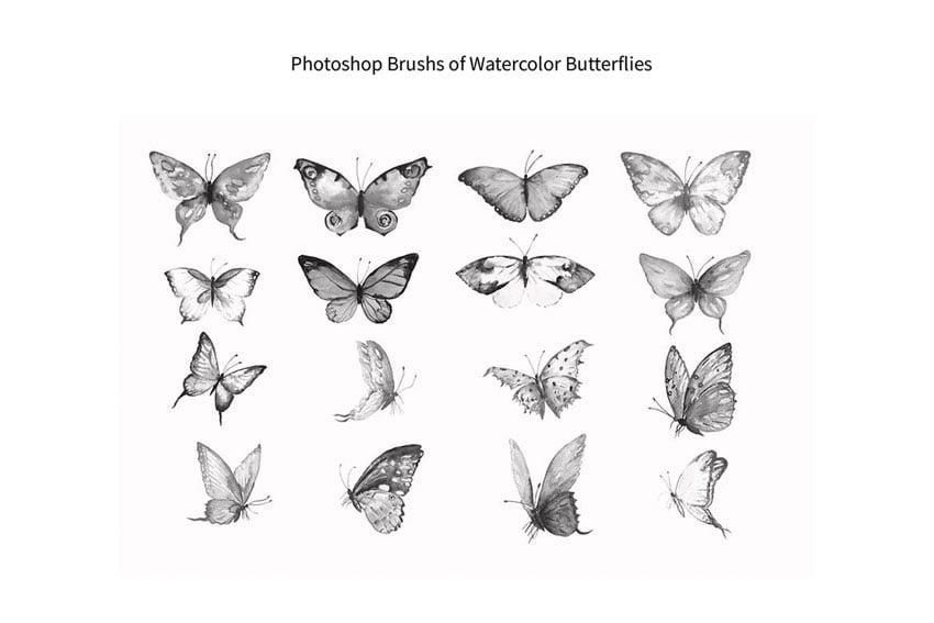 Photoshop Brush Watercolor Butterflies ABR