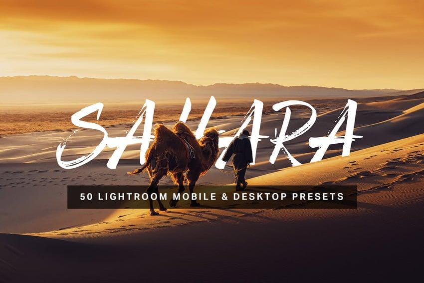 50 Sahara Lightroom Presets and LUTs
