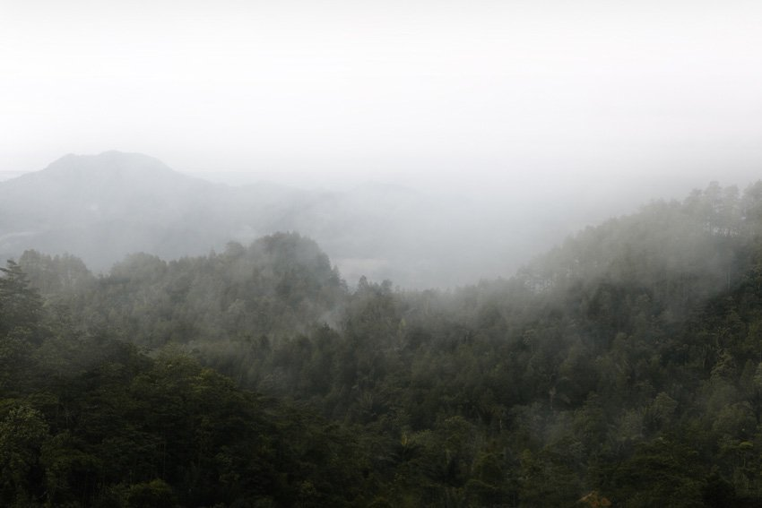 Mist by twenty20photos - from Envato Elements
