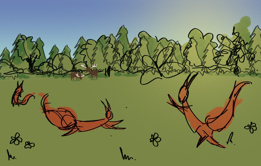 Ruan - Squirrels Rough Colour