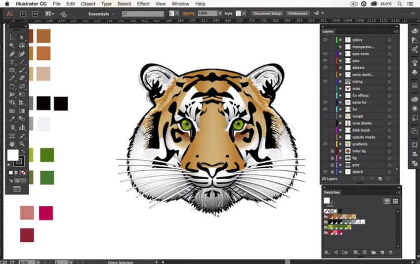 Process of creating a tiger design in Adobe Illustrator