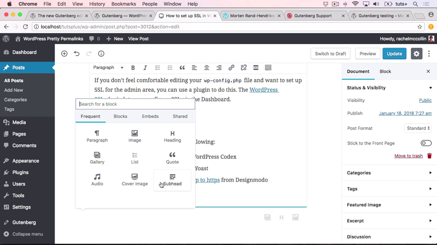 Screenshot of WordPress Gutenberg in action