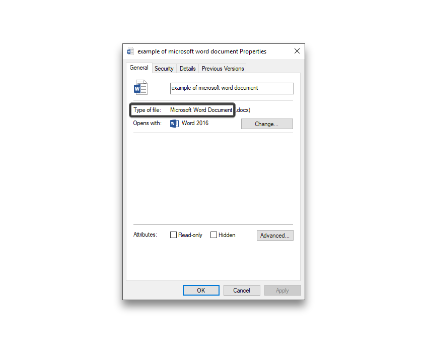 example of microsoft word file type