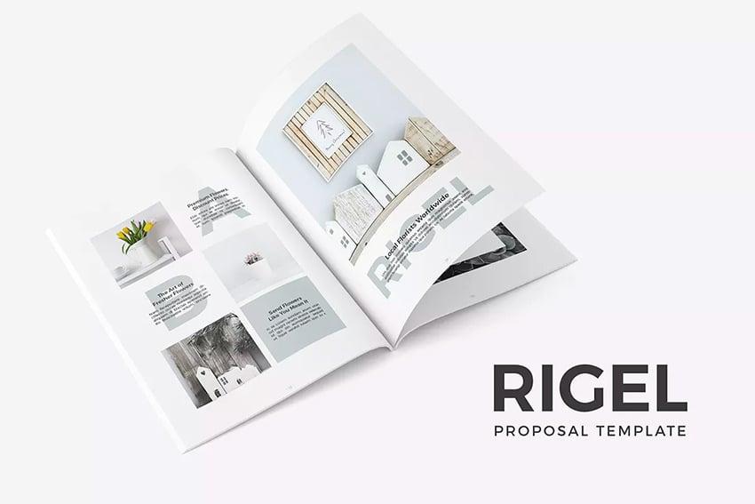 Rigel Proposal Template