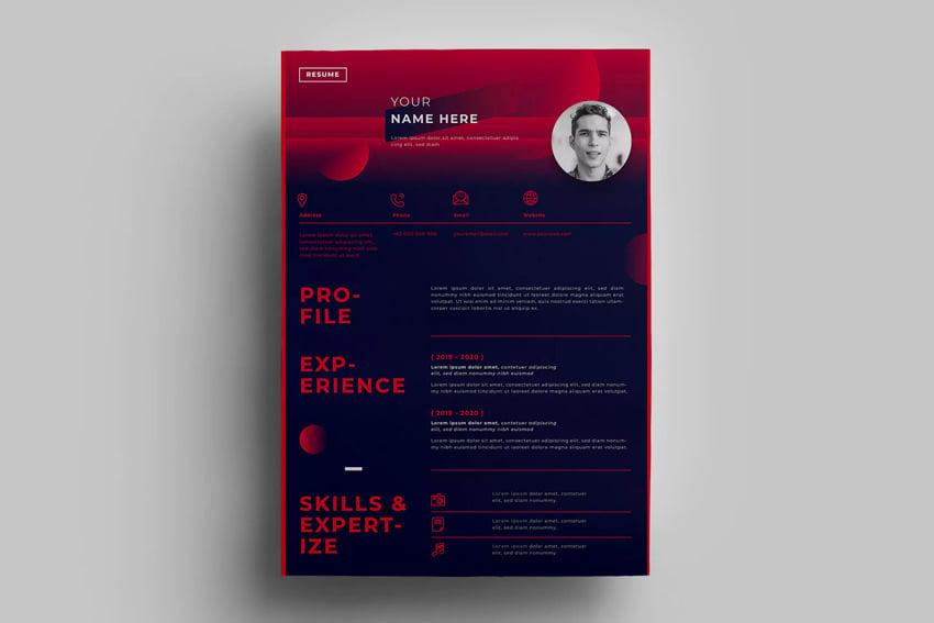 Resume Design Template No 14